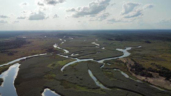 Озеро Нобель та ріка Припять