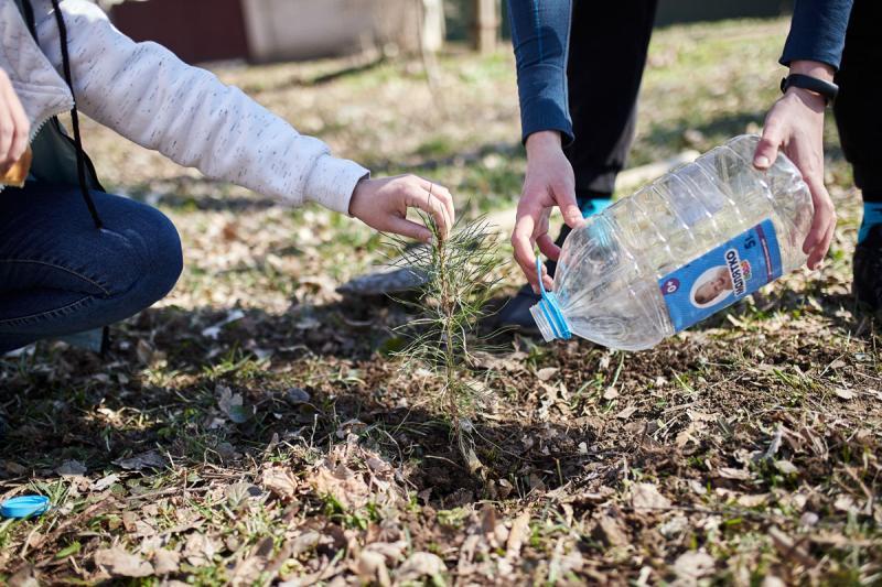 Компания Vnedorognik.ua приняла участие во всемирной акции «1 млн деревьев за 1 день в 100 городах мира» image 8
