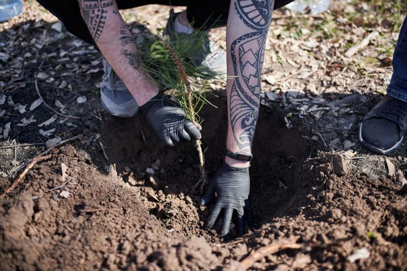 Компания Vnedorognik.ua приняла участие во всемирной акции «1 млн деревьев за 1 день в 100 городах мира» image 6